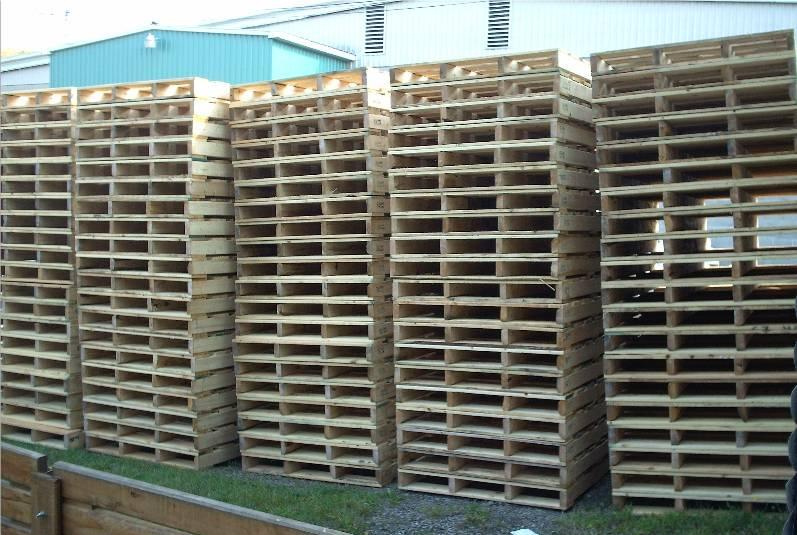 palette de bois a vendre bande transporteuse caoutchouc. Black Bedroom Furniture Sets. Home Design Ideas